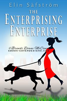 Enterprising Enterprise ebook cover